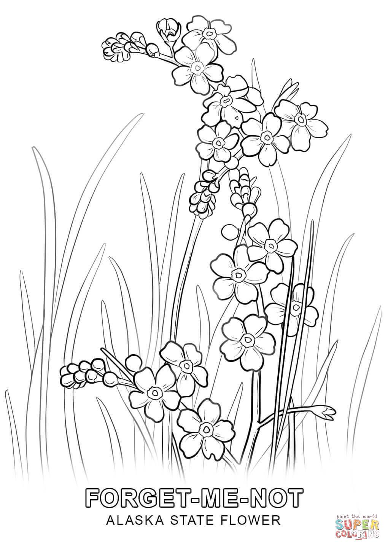 Alaska coloring #7, Download drawings