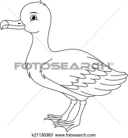 Albatross coloring #12, Download drawings