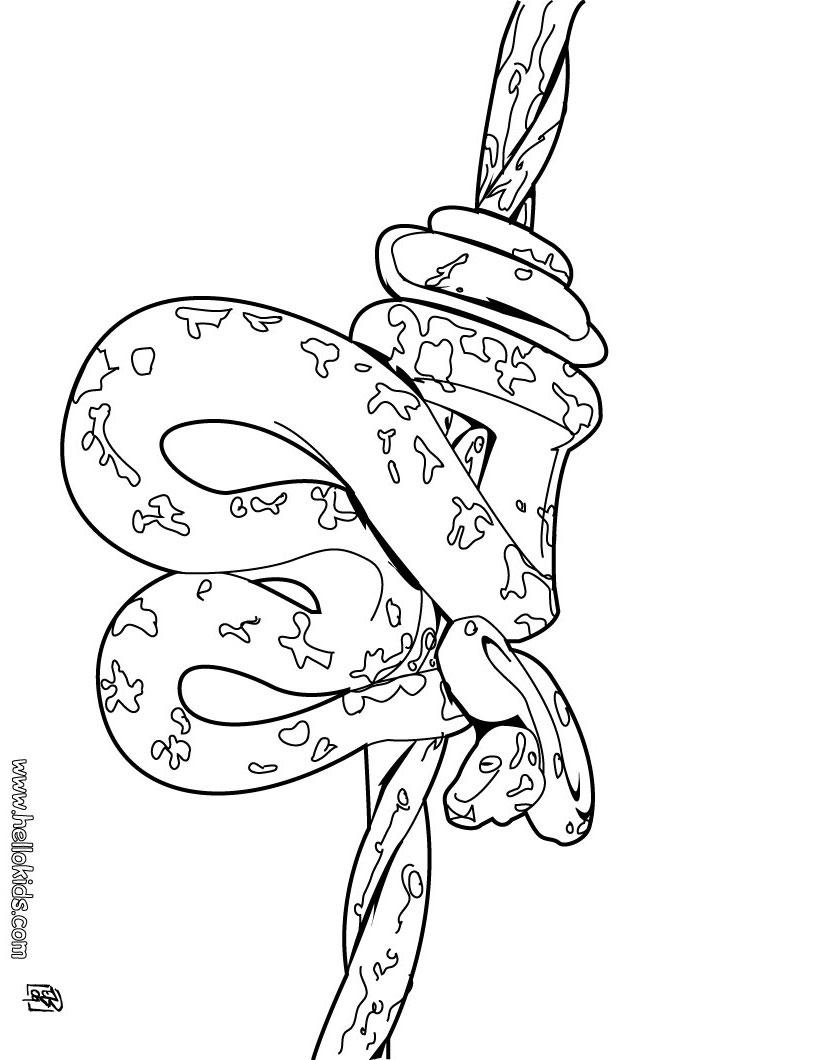 Tree Snake coloring #20, Download drawings