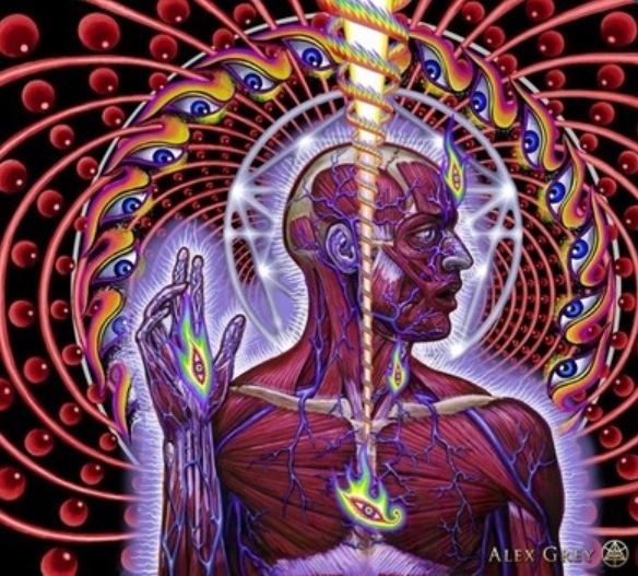 Alex Grey clipart #14, Download drawings