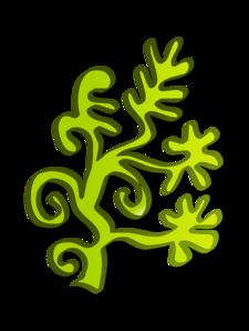 Algae clipart #18, Download drawings