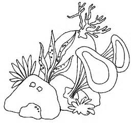 Algae coloring #16, Download drawings