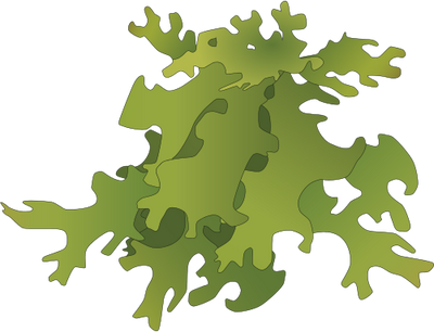 Moss svg #10, Download drawings