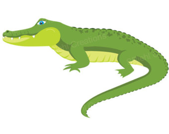 Alligator clipart #17, Download drawings