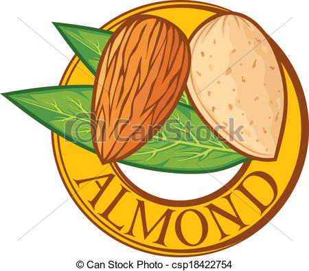 Almond clipart #11, Download drawings