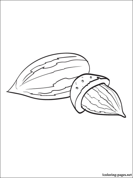 Almond coloring #12, Download drawings