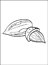 Almond coloring #3, Download drawings