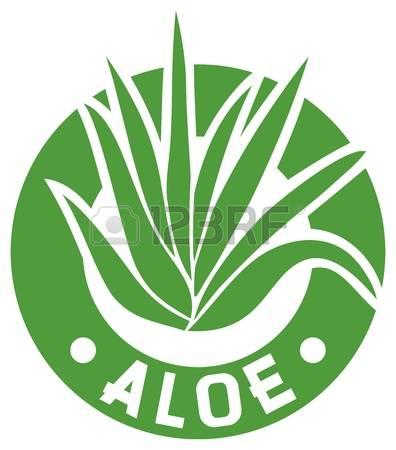 Aloe Vera clipart #16, Download drawings