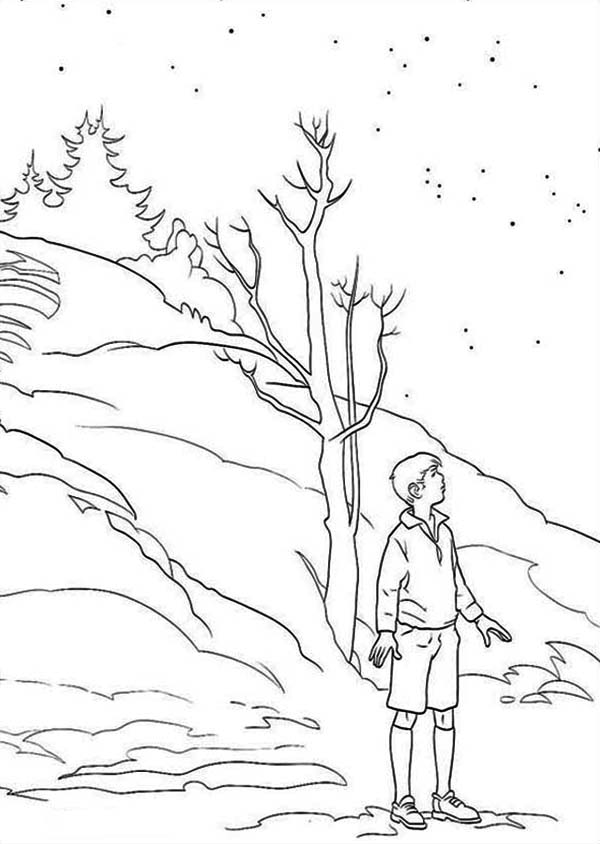 Colorful Narnia Coloring Pages Peter Vignette - Coloring Page Ideas ...
