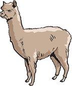 Alpaca clipart #4, Download drawings