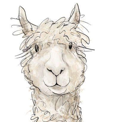 Alpaca clipart #11, Download drawings