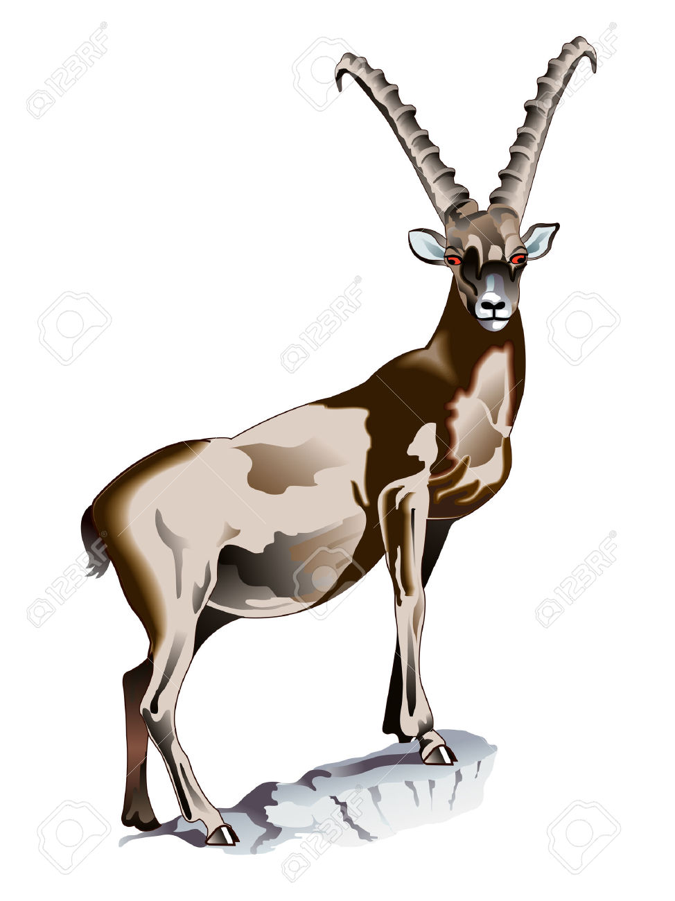 Alpine Ibex clipart #19, Download drawings
