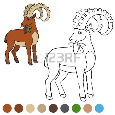 Alpine Ibex clipart #5, Download drawings