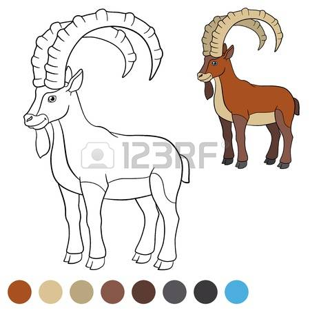 Alpine Ibex clipart #16, Download drawings