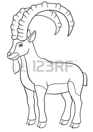 Ibex coloring #2, Download drawings