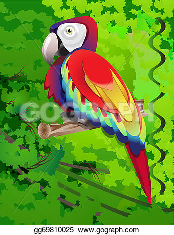 Amazon Parrot clipart #5, Download drawings