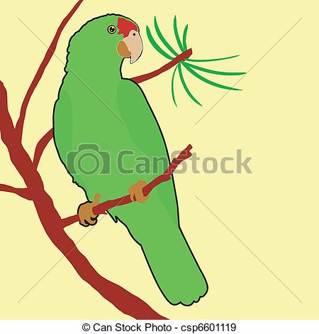 Amazon Parrot clipart #7, Download drawings