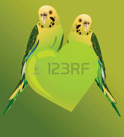 Amazon Parrot clipart #3, Download drawings