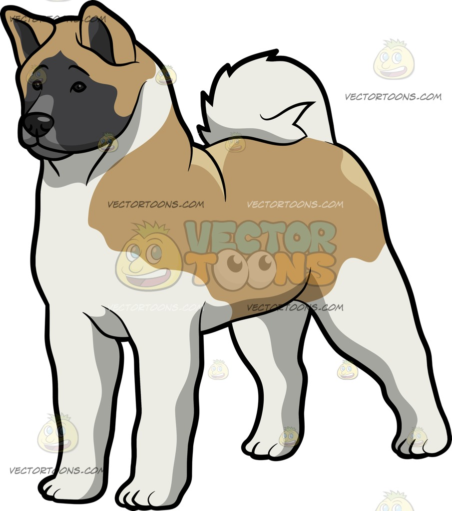 American Akita clipart #3, Download drawings