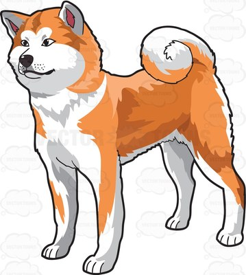 American Akita clipart #1, Download drawings