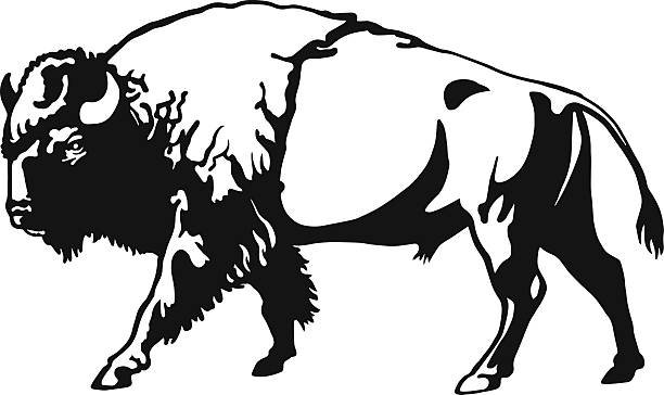 American Bison clipart #16, Download drawings