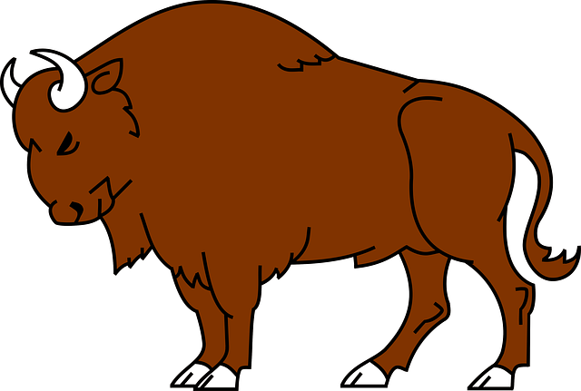 American Bison clipart #10, Download drawings