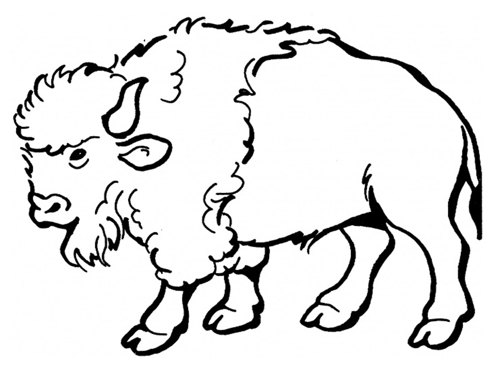 American Bison clipart #6, Download drawings