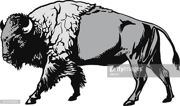 American Bison clipart #2, Download drawings