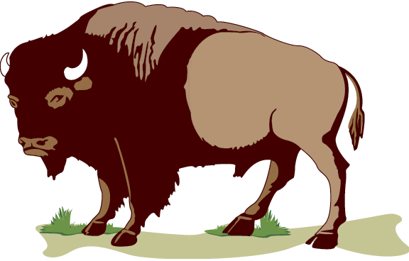 Bison clipart #1, Download drawings