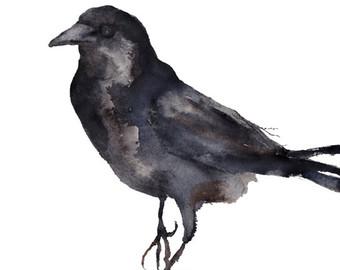 American Crow clipart #12, Download drawings