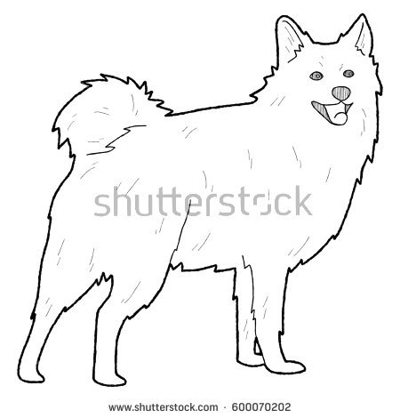 American Eskimo Dog clipart #15, Download drawings