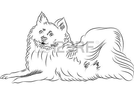 American Eskimo Dog clipart #12, Download drawings