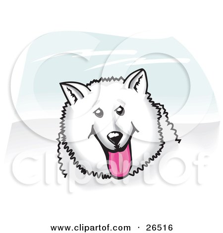 American Eskimo Dog clipart #7, Download drawings