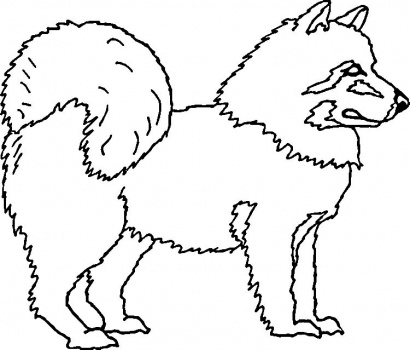 American Eskimo Dog clipart #16, Download drawings