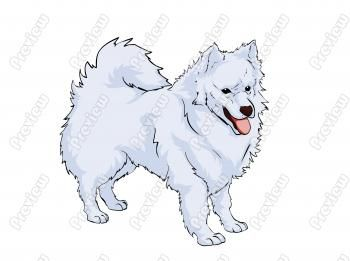 American Eskimo Dog clipart #18, Download drawings