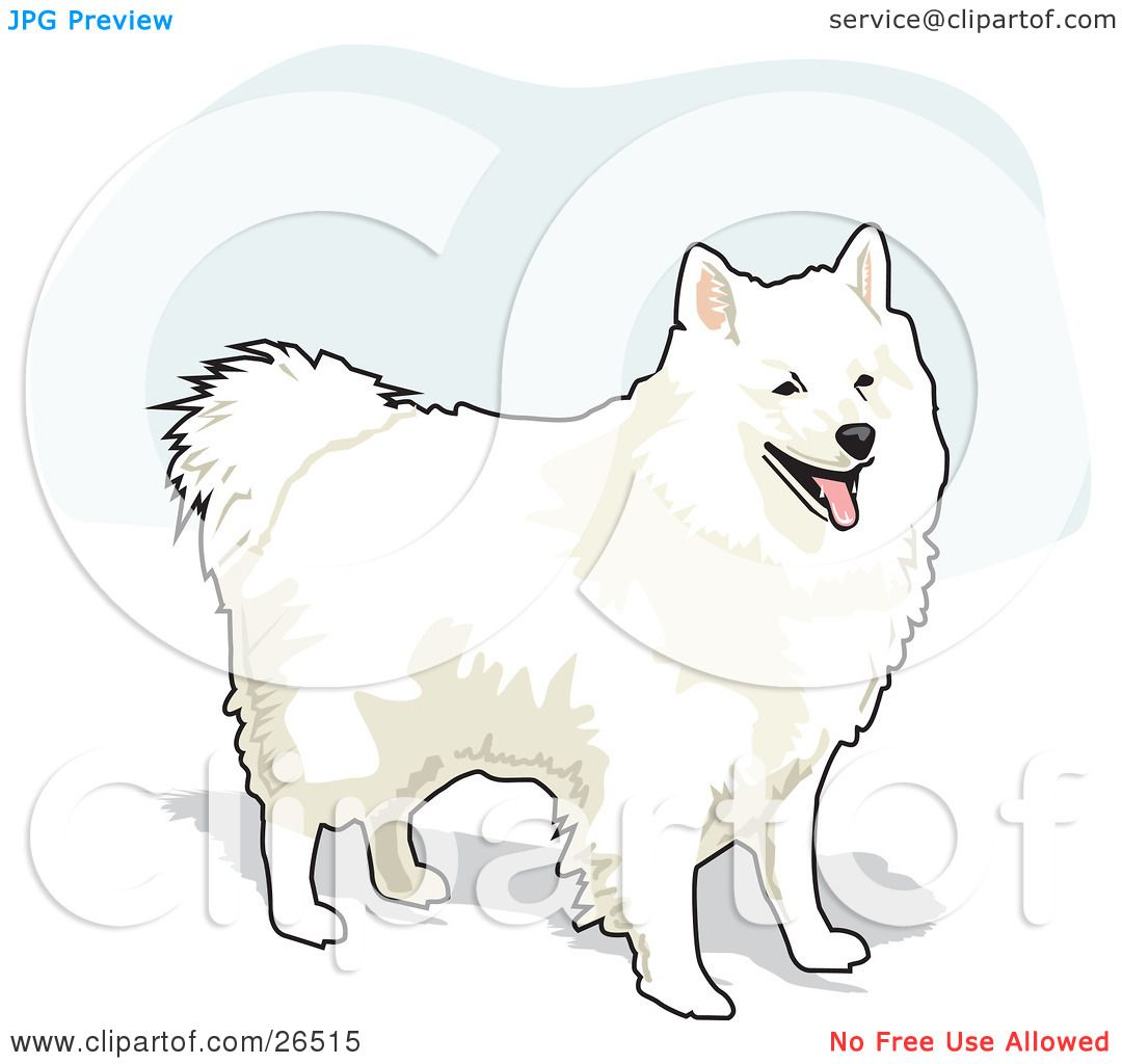 American Eskimo Dog clipart #14, Download drawings