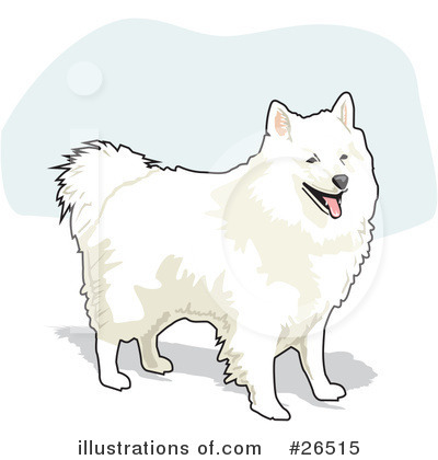 American Eskimo Dog clipart #1, Download drawings