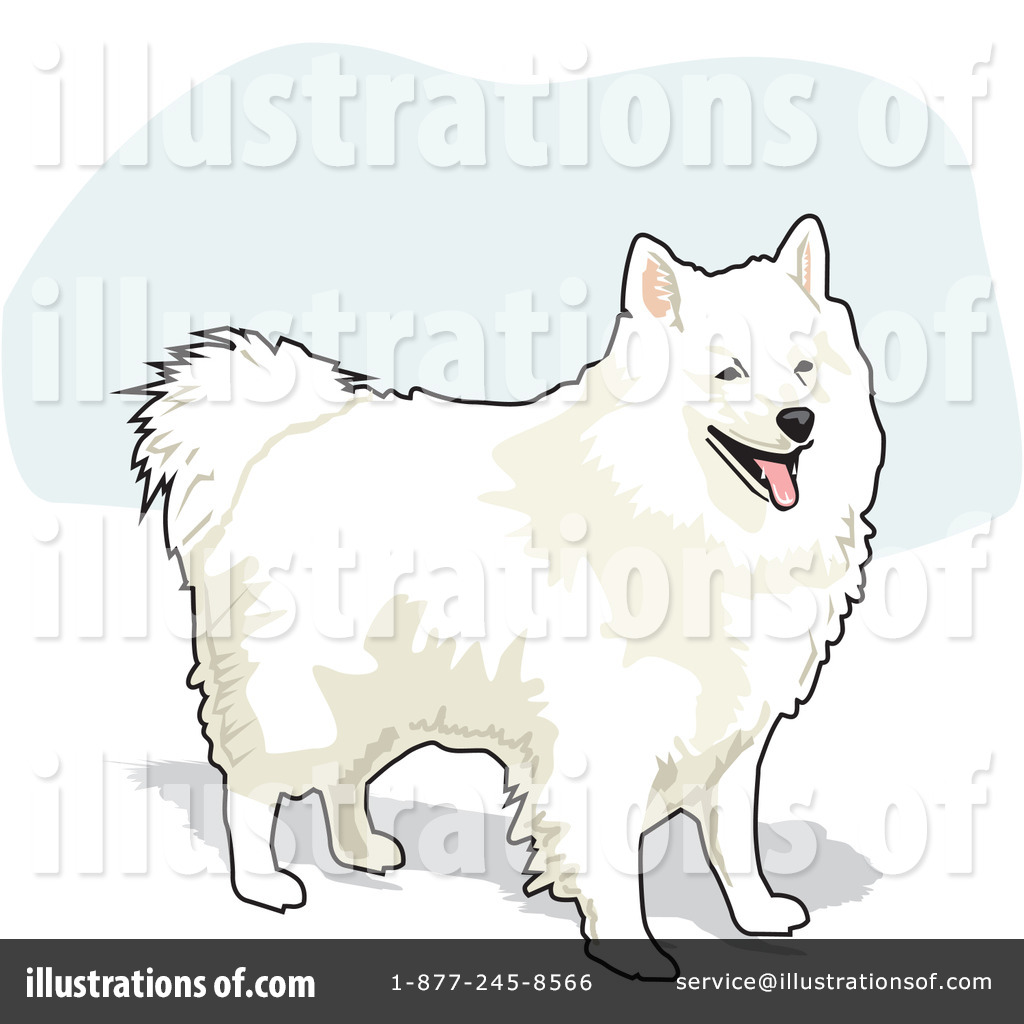 American Eskimo Dog clipart #8, Download drawings