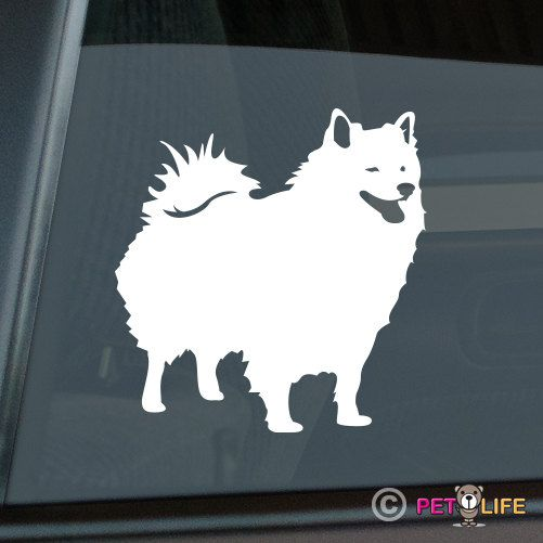 American Eskimo Dog svg #5, Download drawings