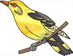 American Goldfinch clipart #13, Download drawings