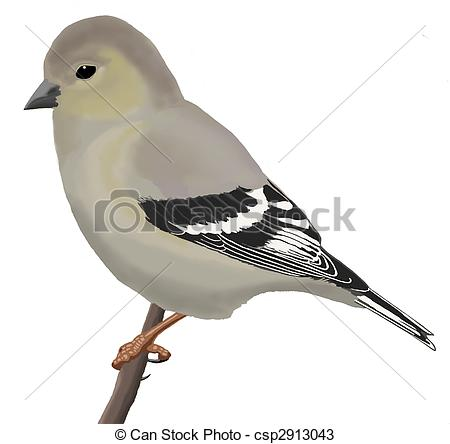 American Goldfinch clipart #7, Download drawings