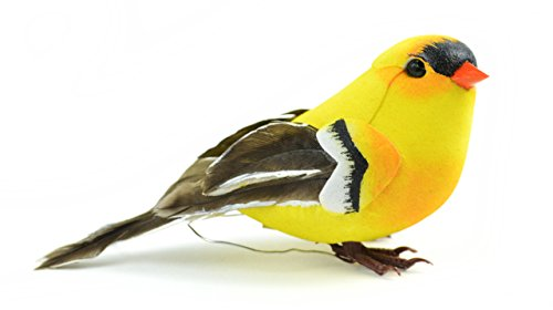 American Goldfinch clipart #9, Download drawings