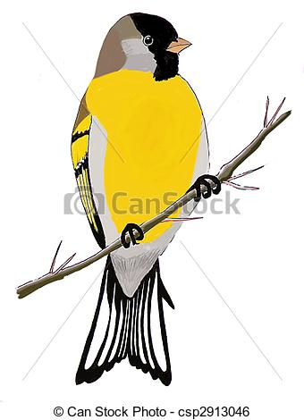 American Goldfinch clipart #5, Download drawings
