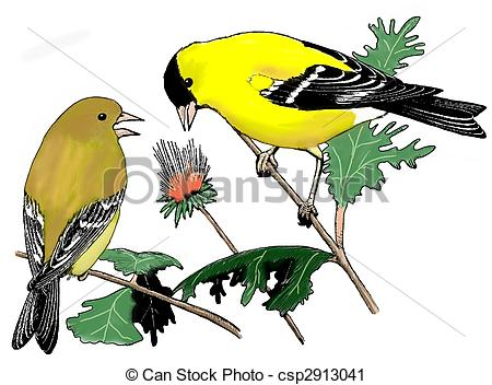 Goldfinch clipart #6, Download drawings