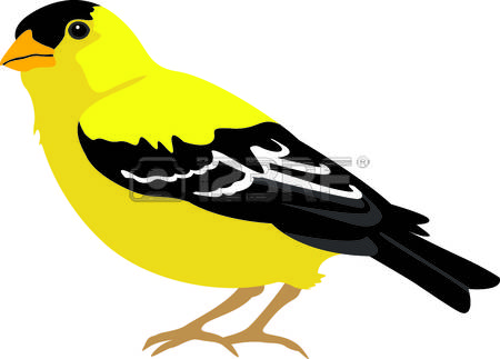 Goldfinch clipart #12, Download drawings