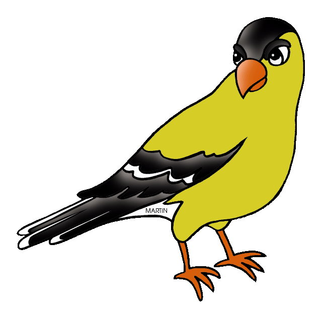 American Goldfinch clipart #14, Download drawings