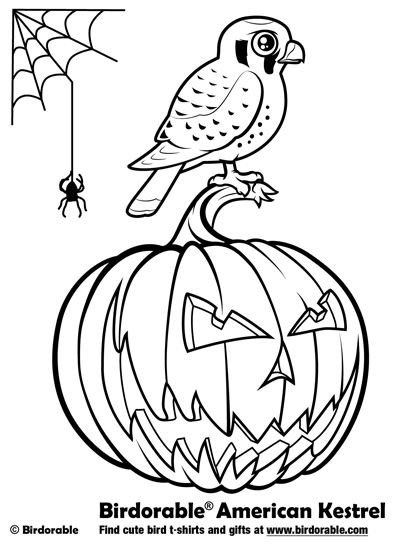 Kestrel coloring #10, Download drawings