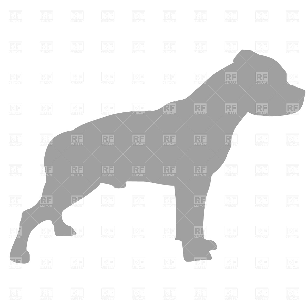 American Pit Bull Terrier clipart #3, Download drawings
