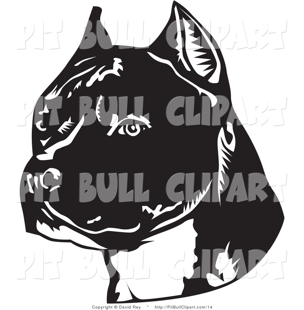 American Pit Bull Terrier clipart #15, Download drawings