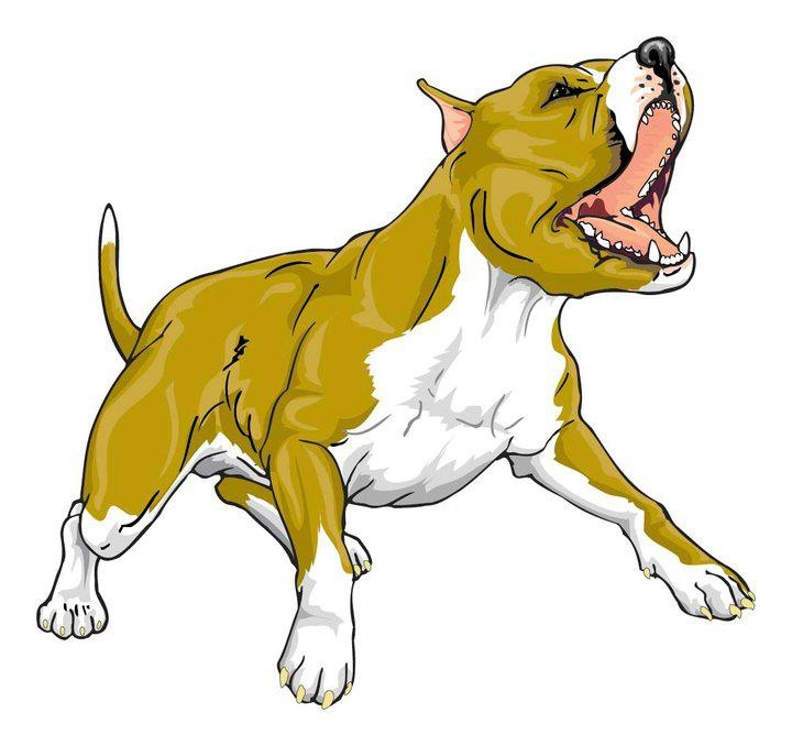 American Pit Bull Terrier clipart #12, Download drawings